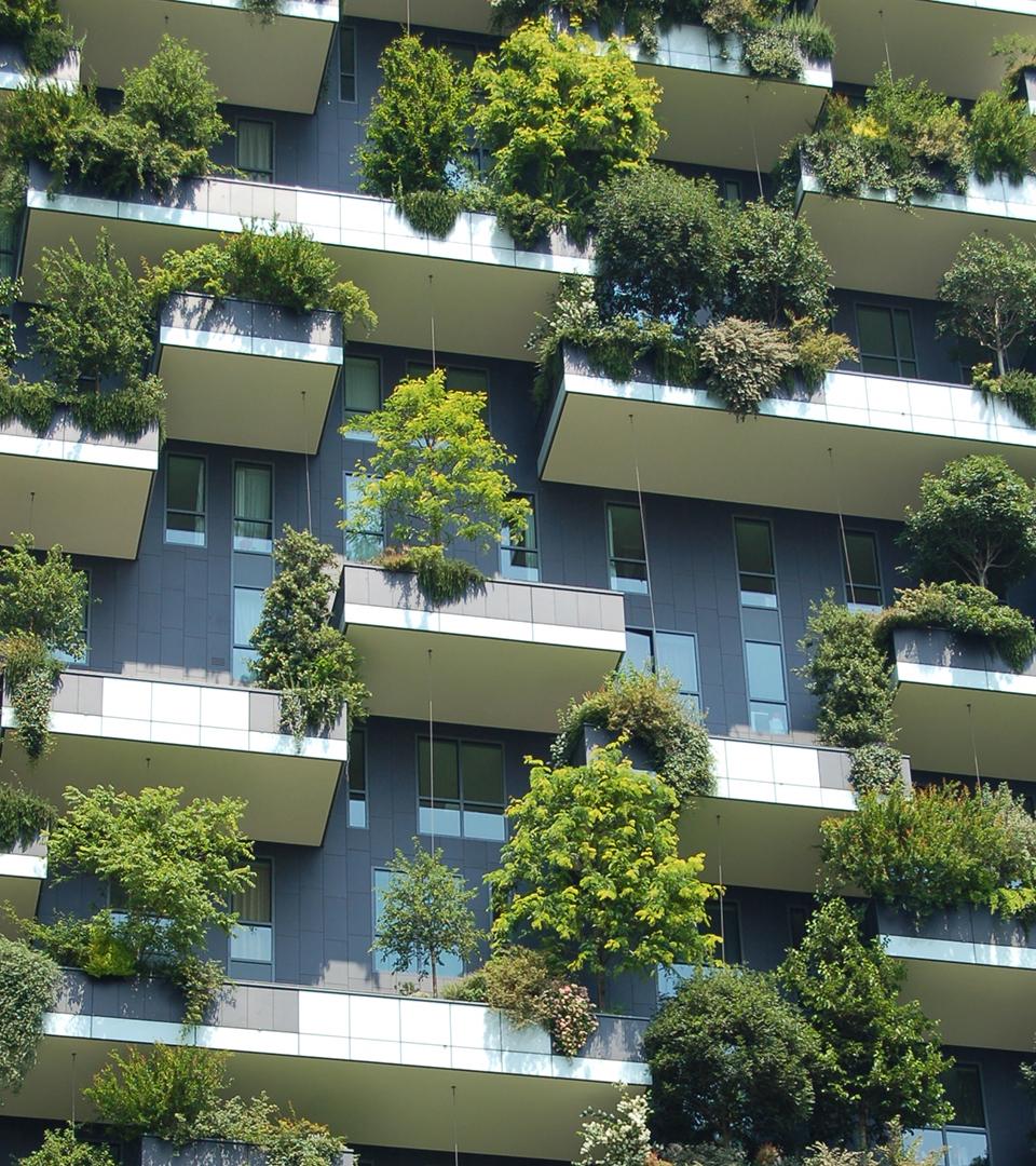 Balkonger på ett höghus med stora gröna växter på varje balkonger.